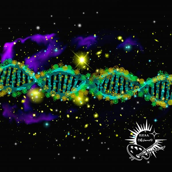 Sacred DNA Activation